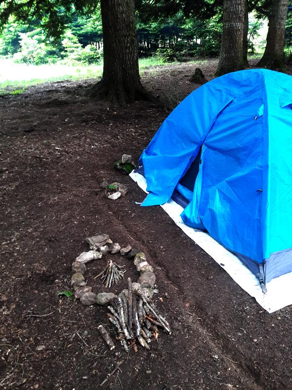 کمپ در جنگلهای گرجستان